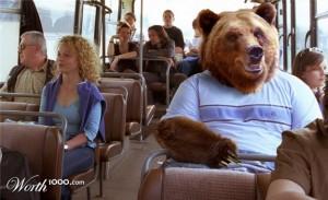 Bear on Bus