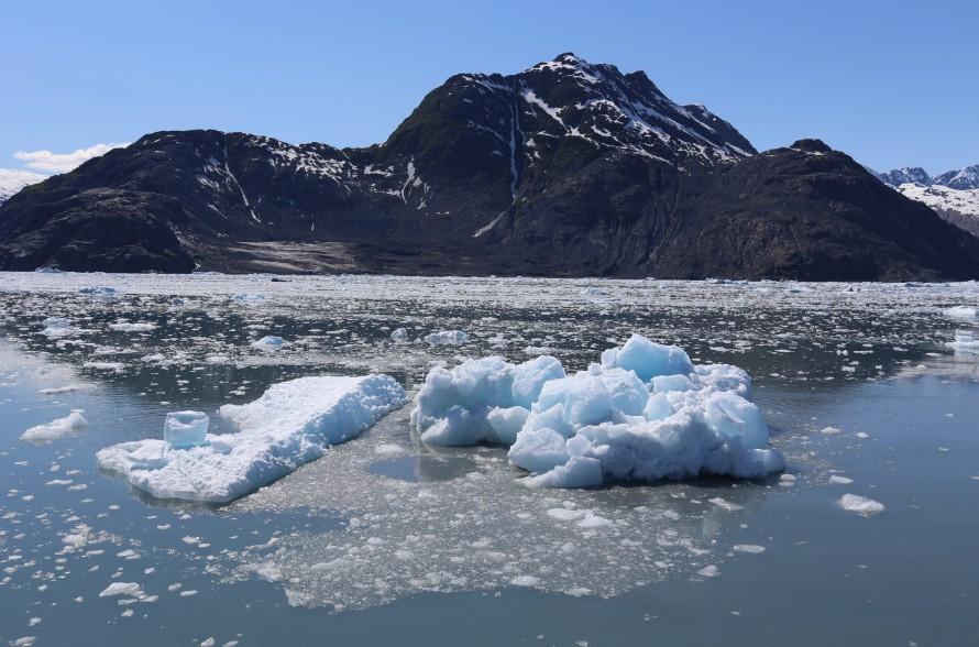 Little Icebergs